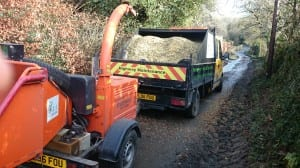 Trewithen EstateTree surgeon wood chip
